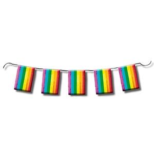 Tira de bandera Orgullo LGTB 10m